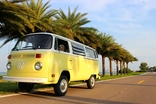 VW Bus with palm trees